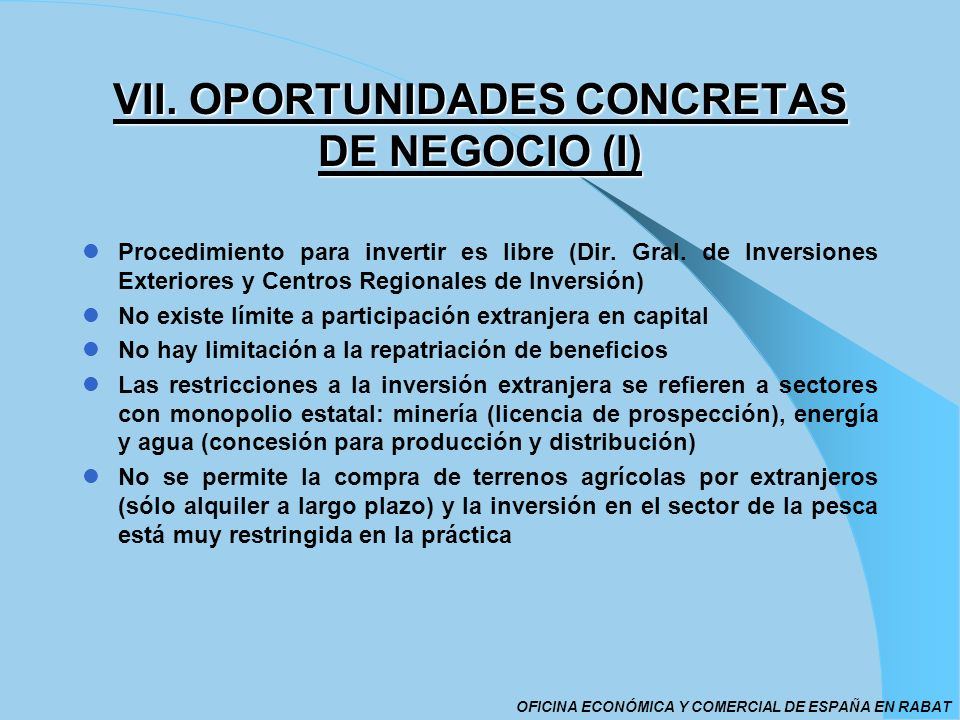 VII. OPORTUNIDADES CONCRETAS DE NEGOCIO (I)