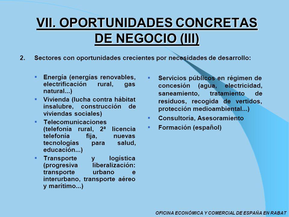 VII. OPORTUNIDADES CONCRETAS DE NEGOCIO (III)