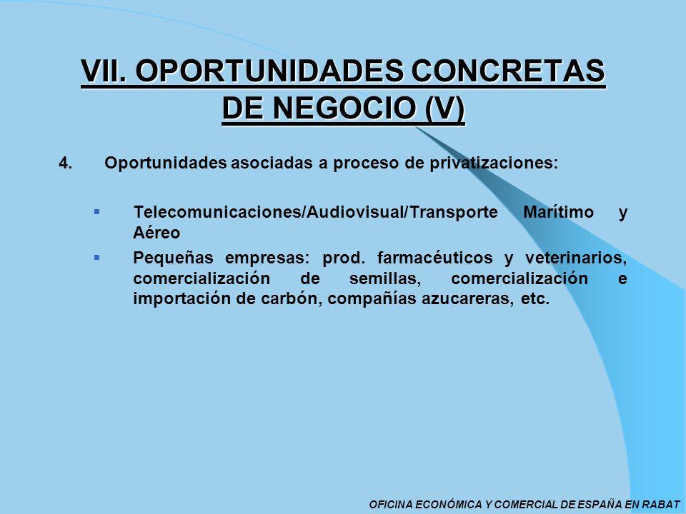 VII. OPORTUNIDADES CONCRETAS DE NEGOCIO (V)