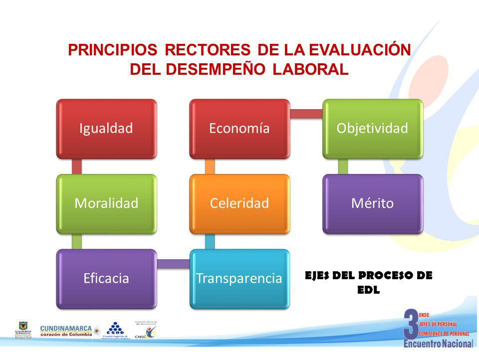PRINCIPIOS RECTORES DE LA EVALUACIÓN DEL DESEMPEÑO LABORAL