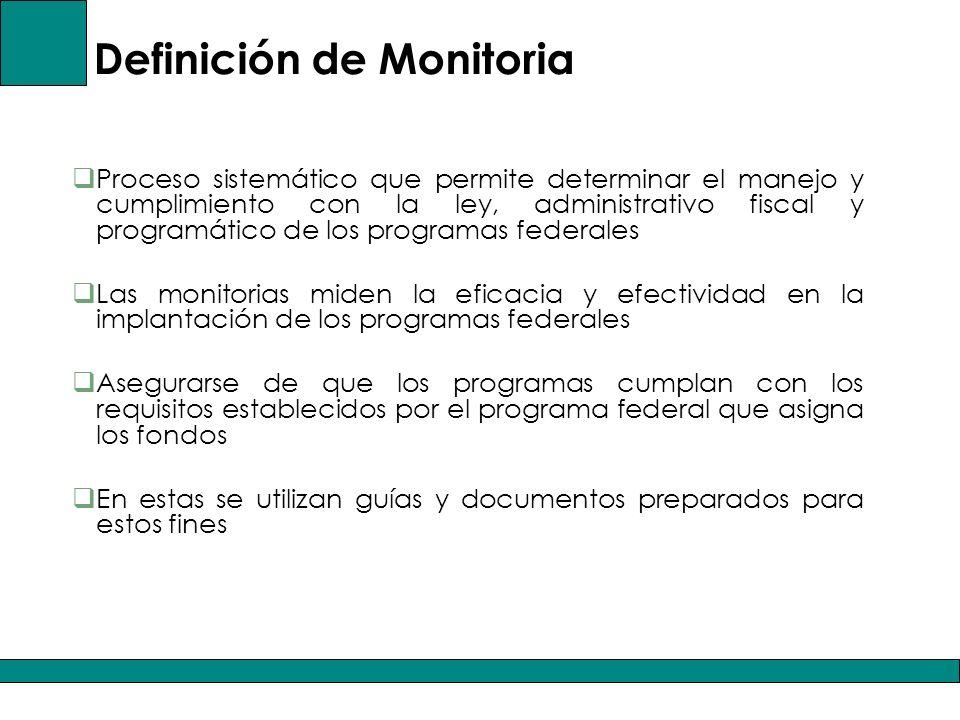 Definición de Monitoria