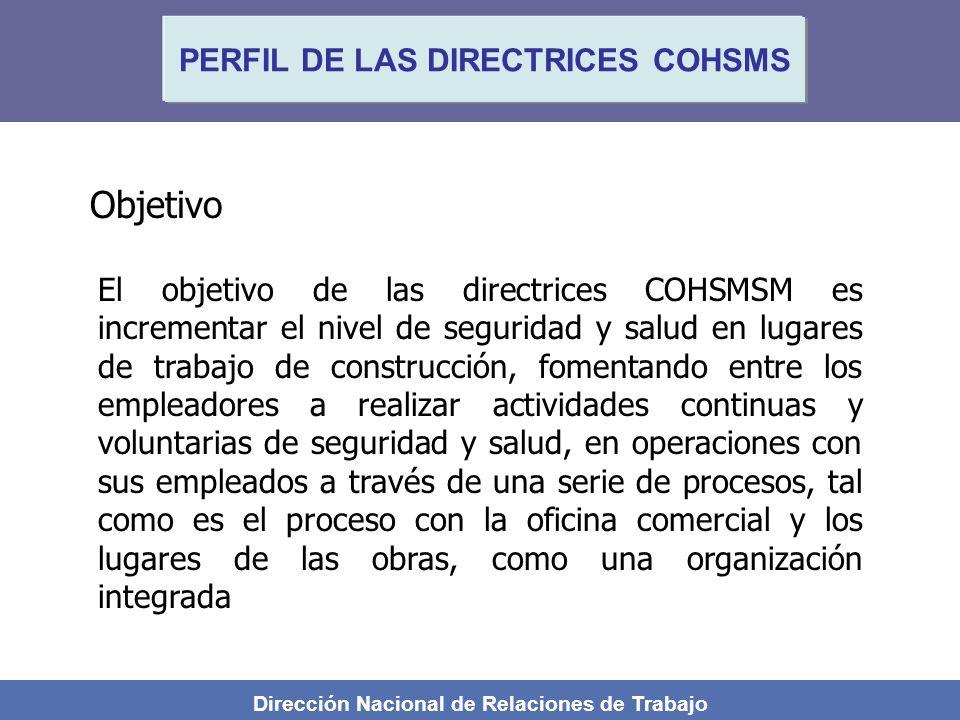 Objetivo PERFIL DE LAS DIRECTRICES COHSMS