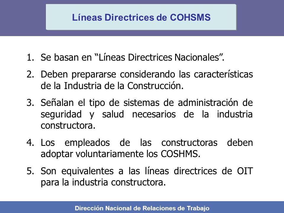 Líneas Directrices de COHSMS
