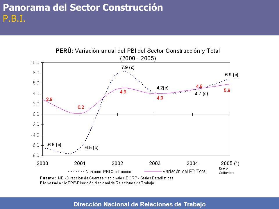 Panorama del Sector Construcción P.B.I.