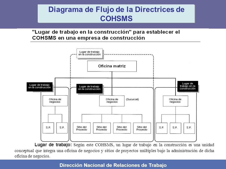 Diagrama de Flujo de la Directrices de COHSMS