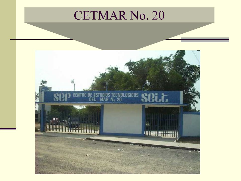 CETMAR No. 20