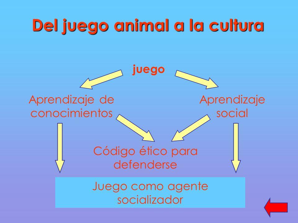 Del juego animal a la cultura