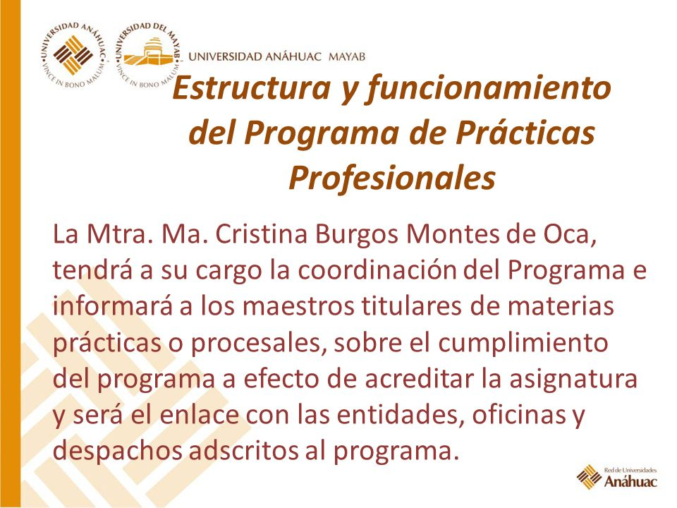 Estructura y funcionamiento del Programa de Prácticas Profesionales