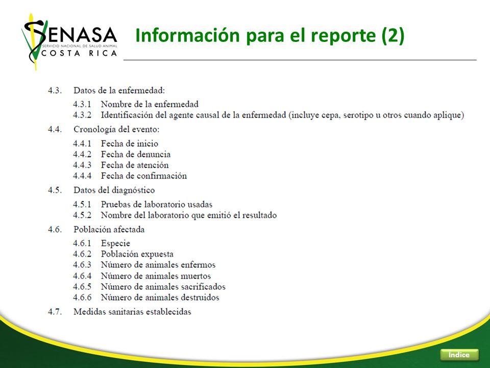 Información para el reporte (2)