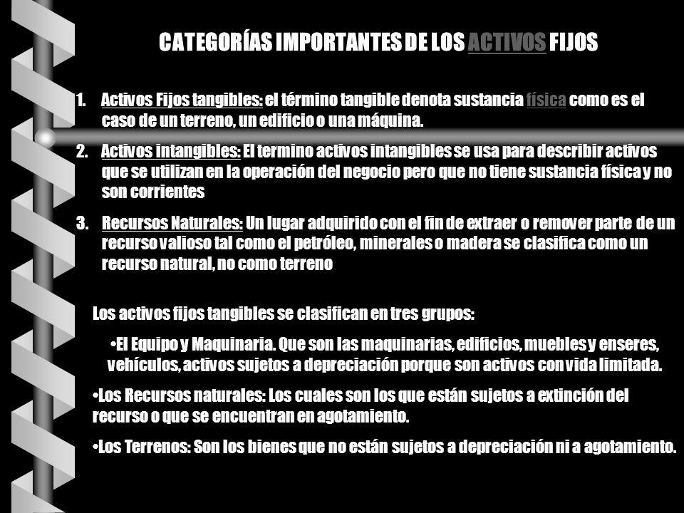 CATEGORÍAS IMPORTANTES DE LOS ACTIVOS FIJOS