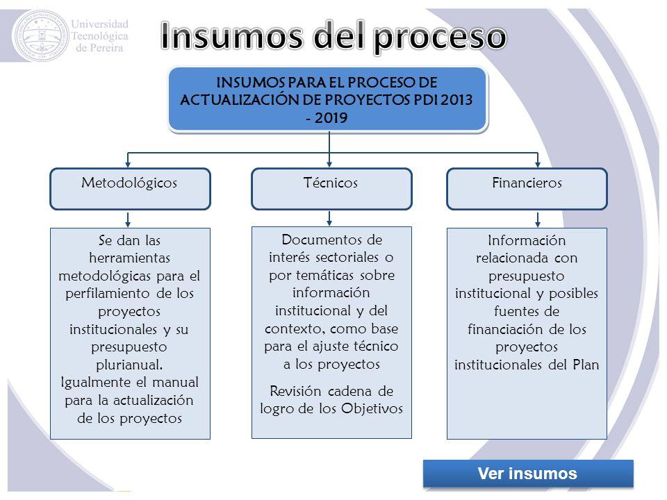 INSUMOS PARA EL PROCESO DE ACTUALIZACIÓN DE PROYECTOS PDI 2013 - 2019
