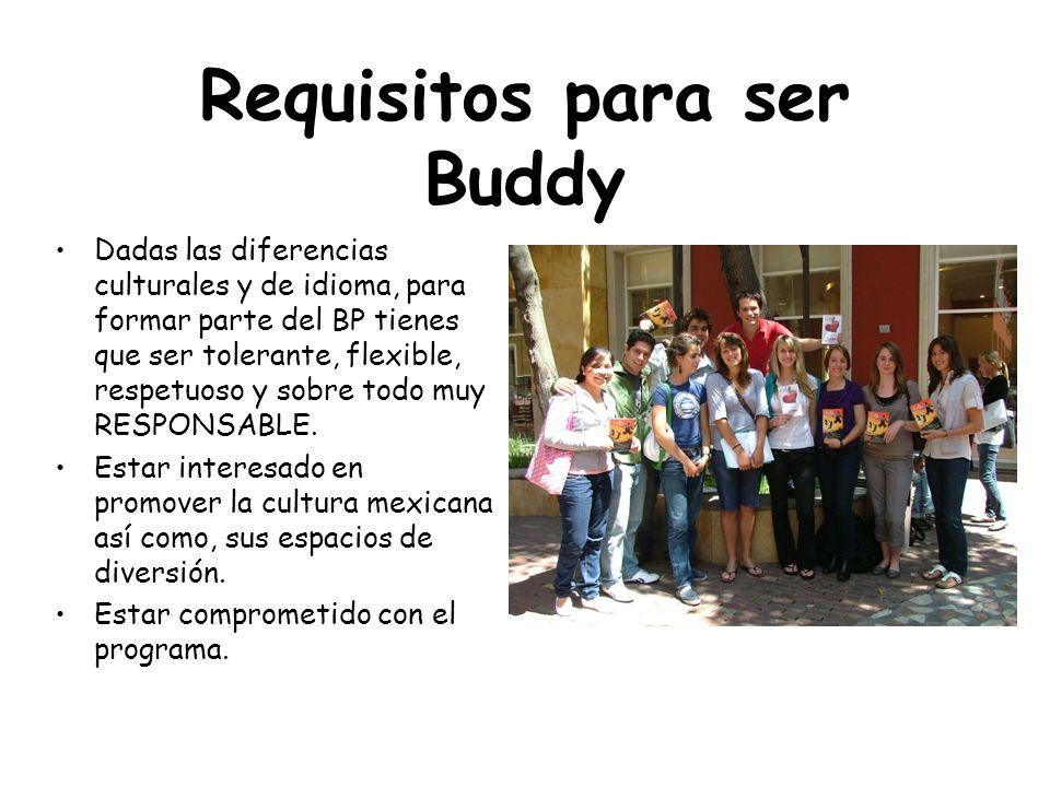 Requisitos para ser Buddy