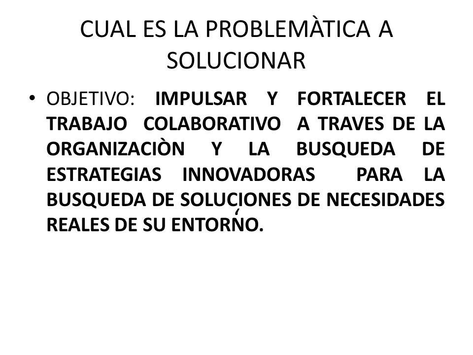 CUAL ES LA PROBLEMÀTICA A SOLUCIONAR '