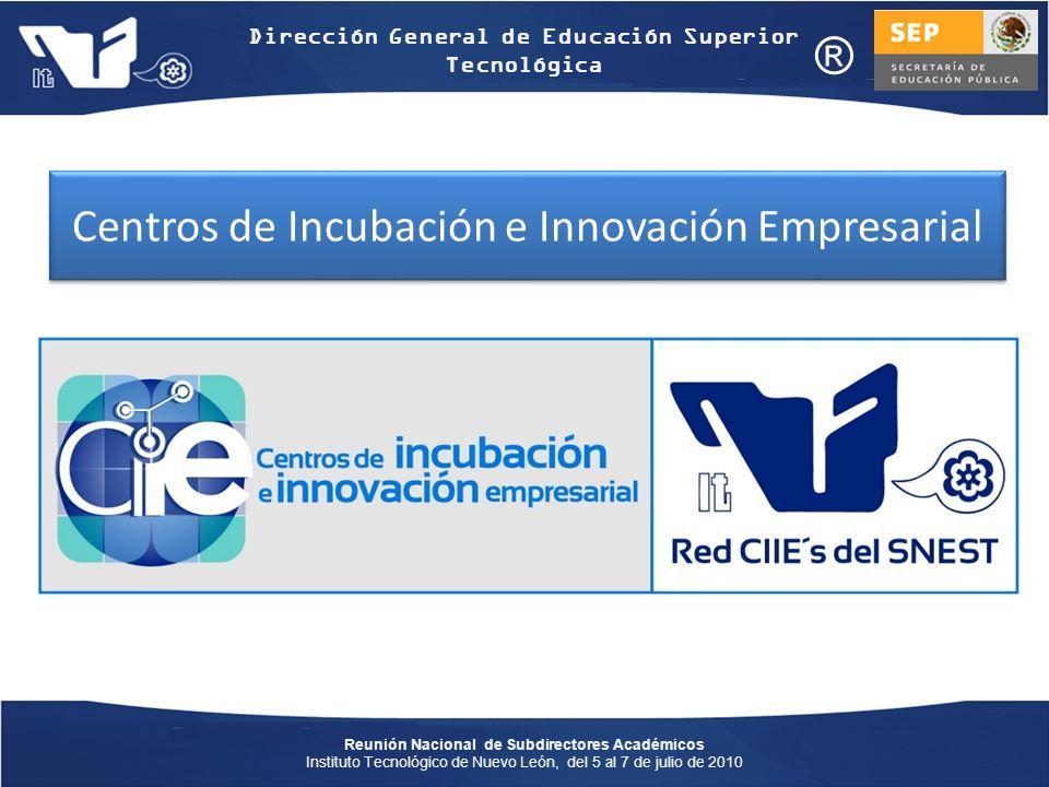 Centros de Incubación e Innovación Empresarial
