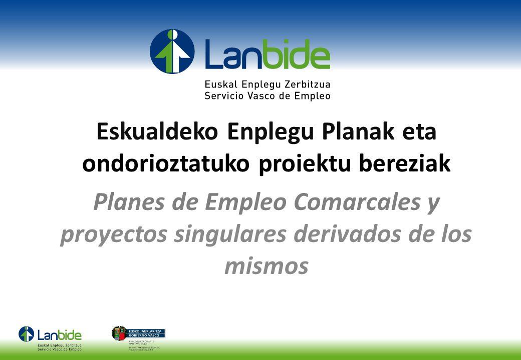 Eskualdeko Enplegu Planak eta ondorioztatuko proiektu bereziak