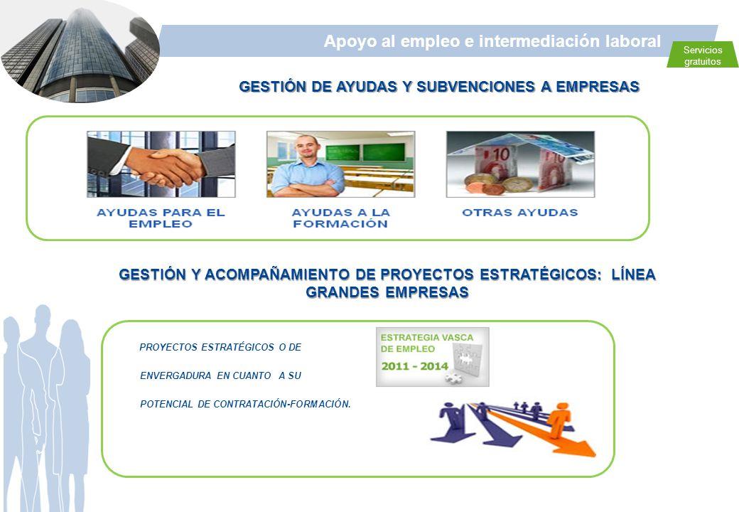 GESTIÓN DE AYUDAS Y SUBVENCIONES A EMPRESAS