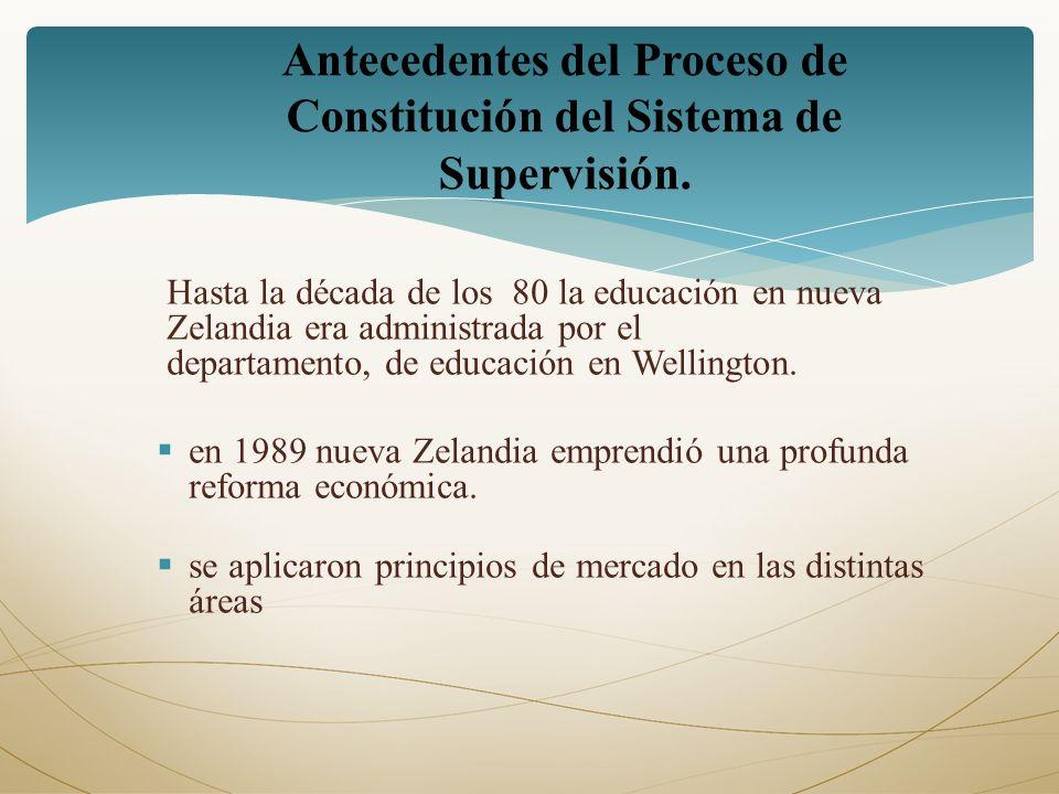 Antecedentes del Proceso de Constitución del Sistema de Supervisión.