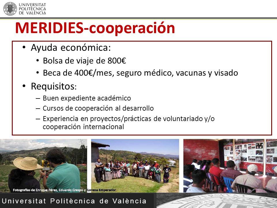 MERIDIES-cooperación