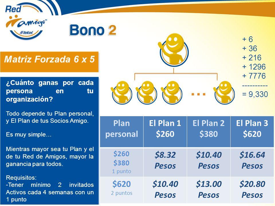 … Matriz Forzada 6 x 5 Plan personal El Plan 1 $260 El Plan 2 $380