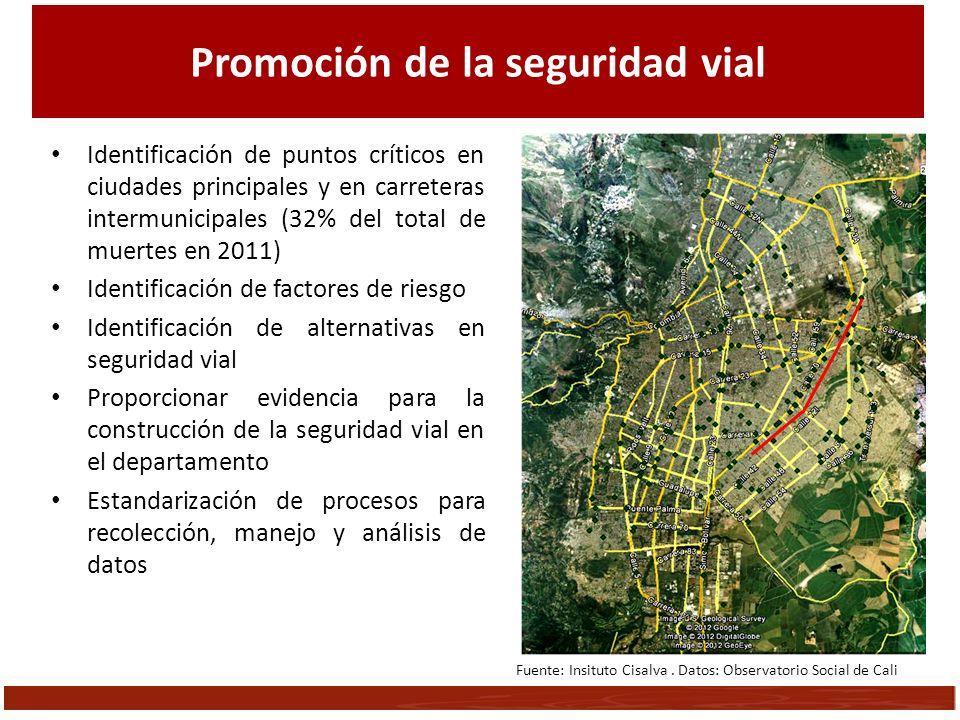 Promoción de la seguridad vial