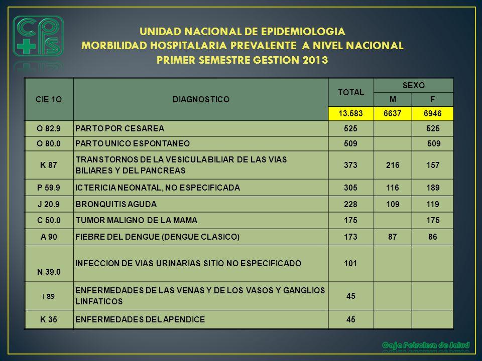 PRIMER SEMESTRE GESTION 2013
