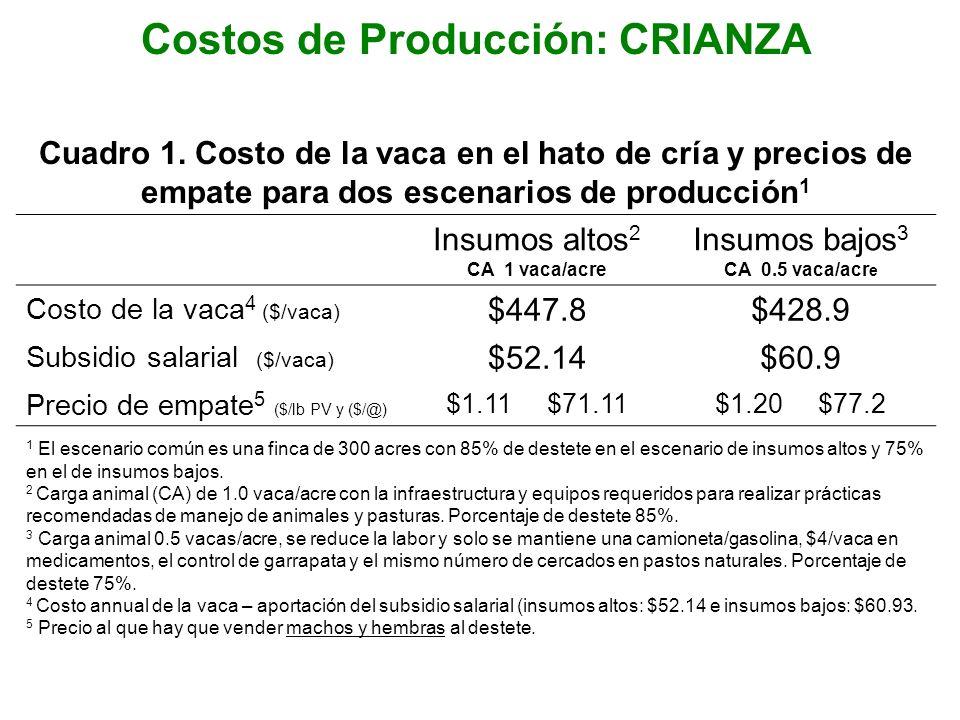 Costos de Producción: CRIANZA