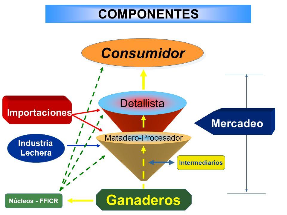 Consumidor Ganaderos COMPONENTES Detallista Mercadeo Importaciones