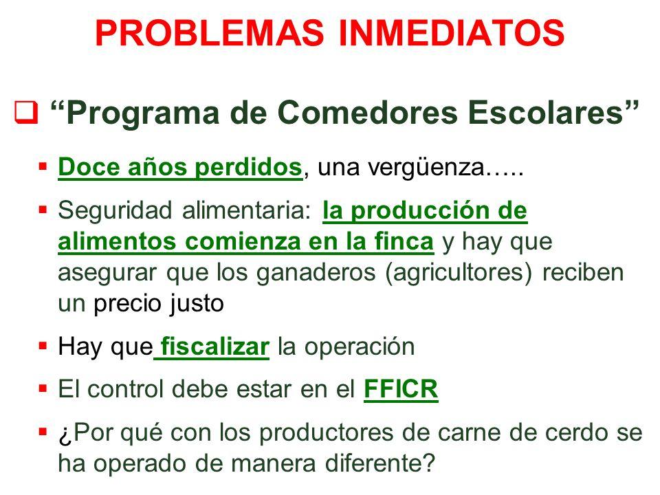 PROBLEMAS INMEDIATOS Programa de Comedores Escolares