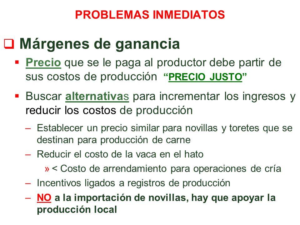 Márgenes de ganancia PROBLEMAS INMEDIATOS