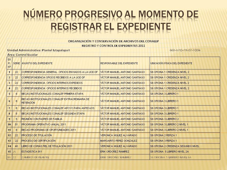 Número progresivo al momento de registrar el expedientE