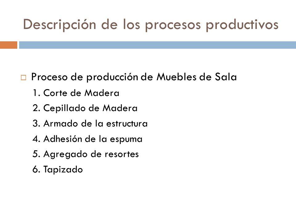 Descripción de los procesos productivos