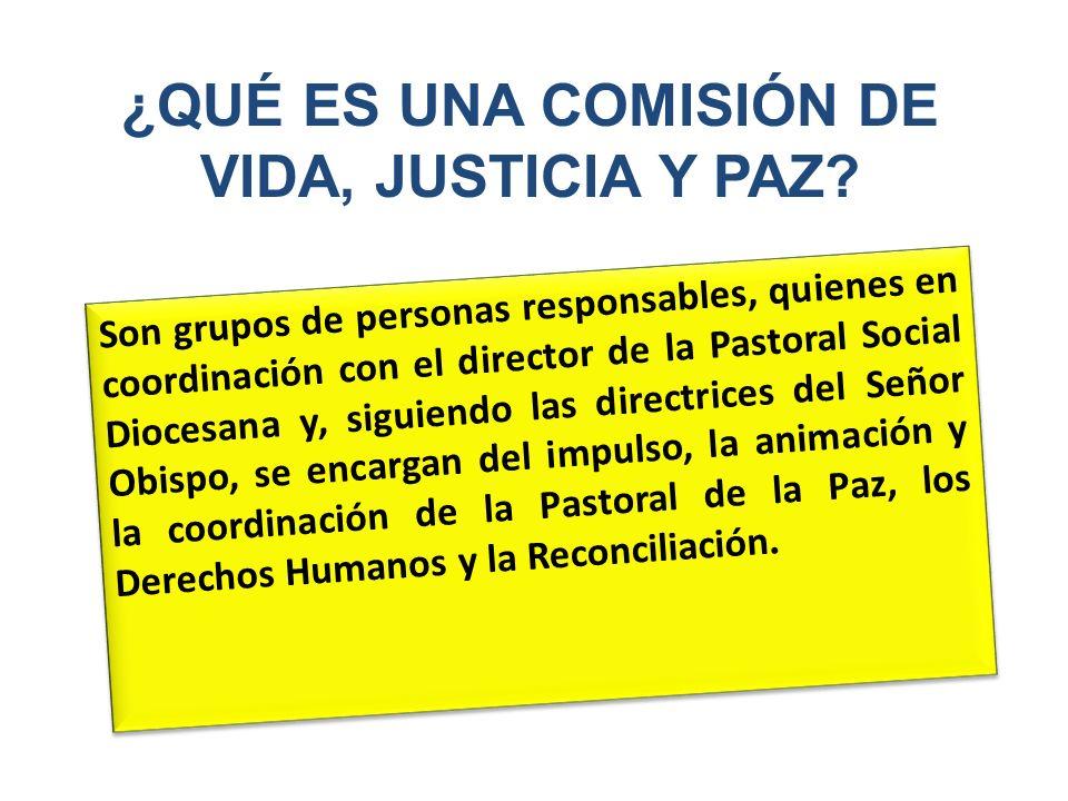 ¿QUÉ ES UNA COMISIÓN DE VIDA, JUSTICIA Y PAZ
