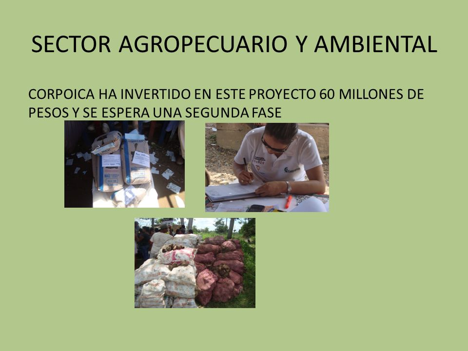 SECTOR AGROPECUARIO Y AMBIENTAL