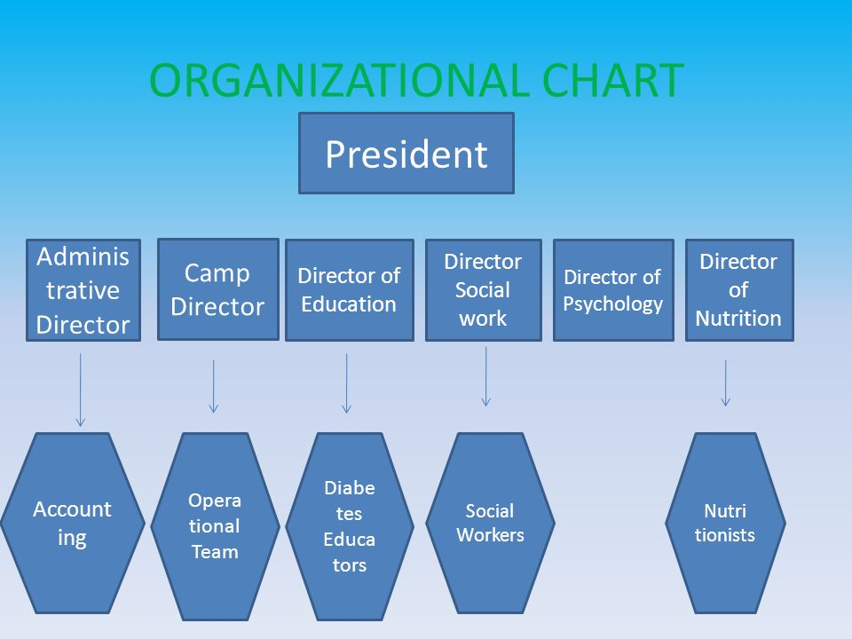 ORGANIZATIONAL CHART President Administrative Director Camp Director