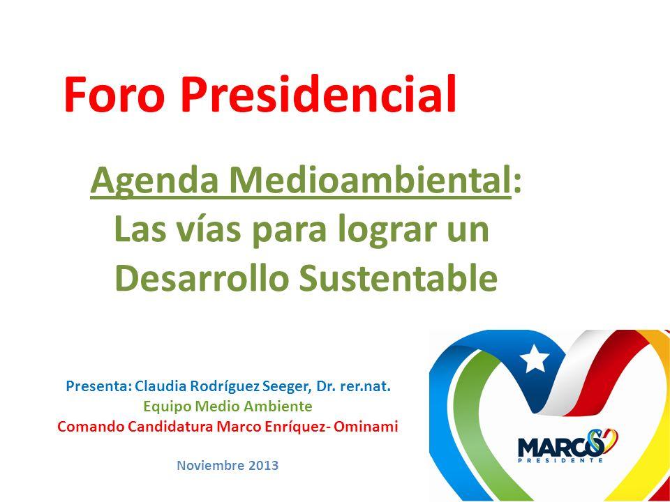 Foro Presidencial Agenda Medioambiental: Las vías para lograr un