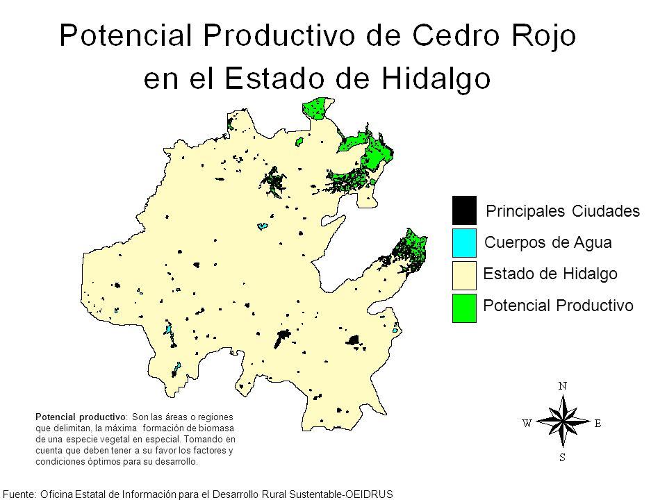 Principales Ciudades Cuerpos de Agua Estado de Hidalgo