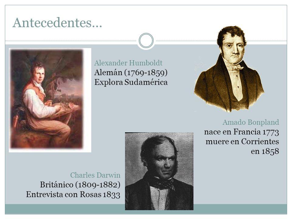 Antecedentes… Alemán (1769-1859) Explora Sudamérica