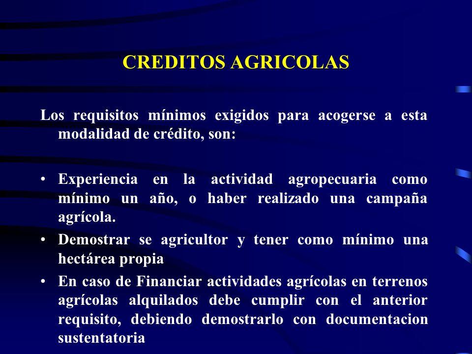 CREDITOS AGRICOLAS Los requisitos mínimos exigidos para acogerse a esta modalidad de crédito, son:
