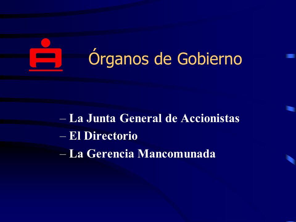 Órganos de Gobierno La Junta General de Accionistas El Directorio
