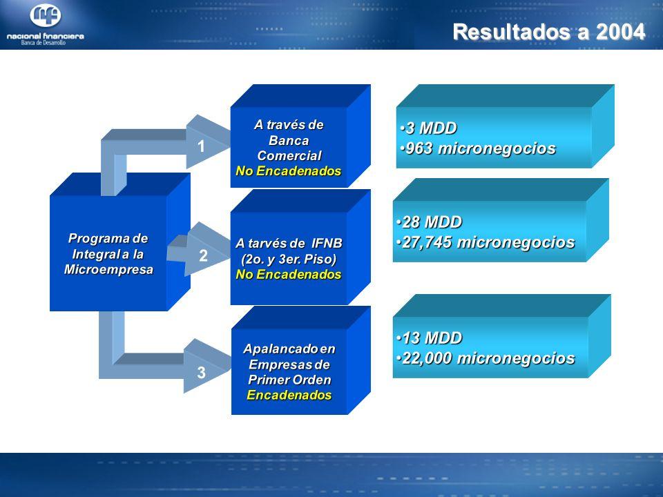 Resultados a 2004 3 MDD 963 micronegocios 1 28 MDD