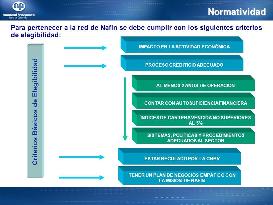 Normatividad Para pertenecer a la red de Nafin se debe cumplir con los siguientes criterios de elegibilidad: