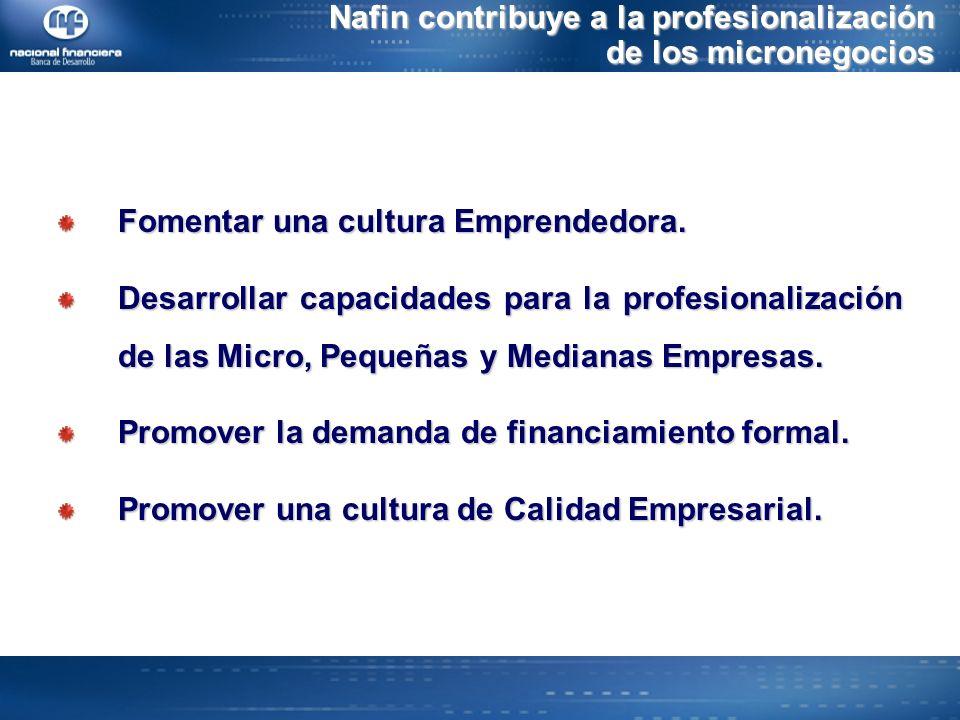 Nafin contribuye a la profesionalización de los micronegocios