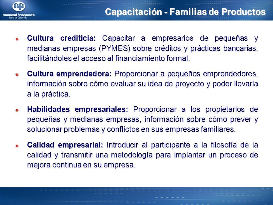Capacitación - Familias de Productos