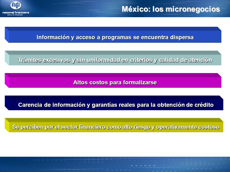 México: los micronegocios
