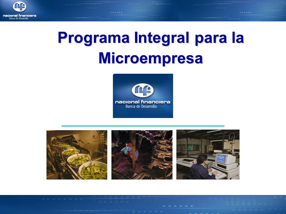 Programa Integral para la Microempresa
