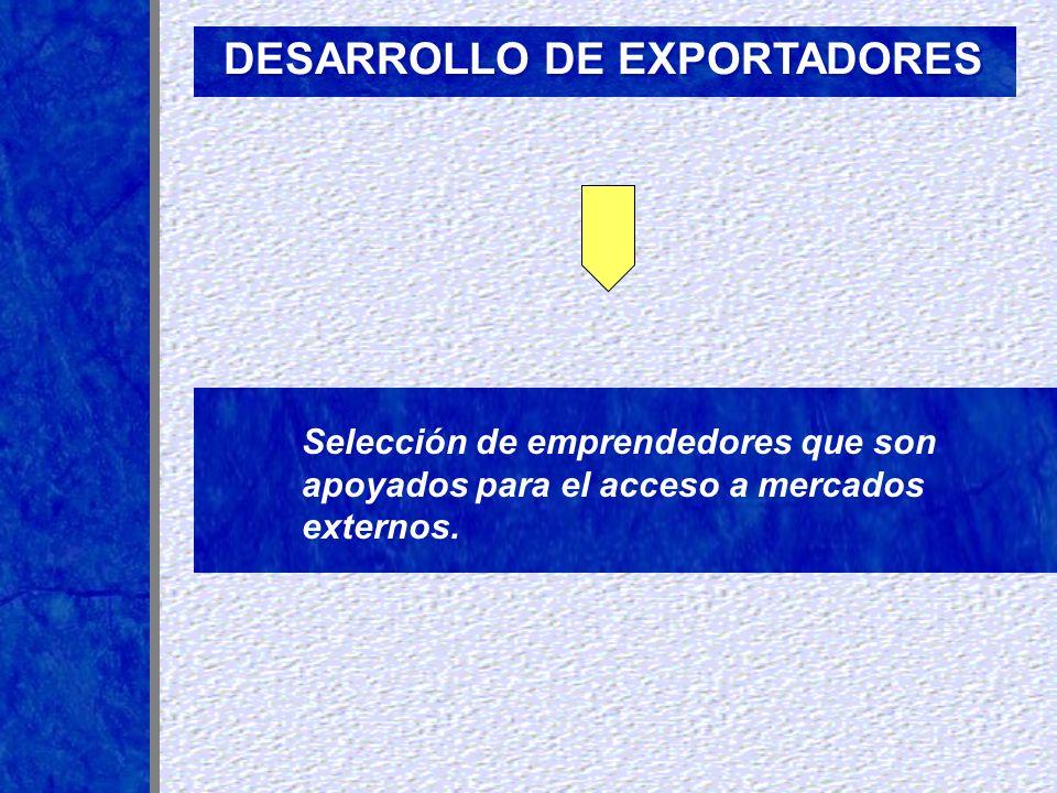 DESARROLLO DE EXPORTADORES