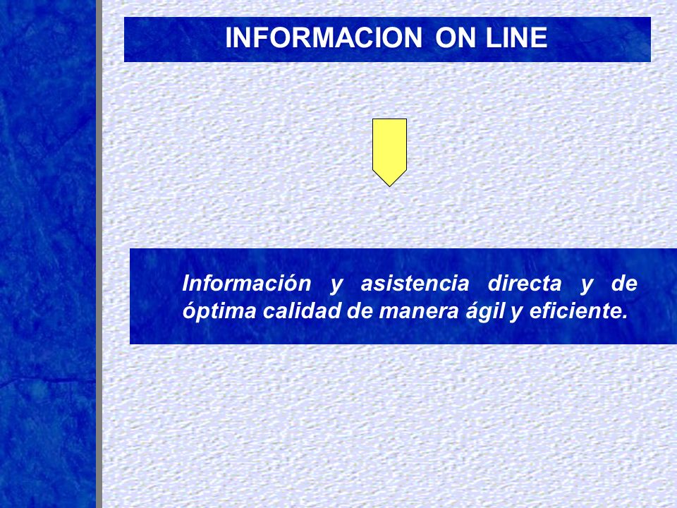 INFORMACION ON LINE Información y asistencia directa y de óptima calidad de manera ágil y eficiente.