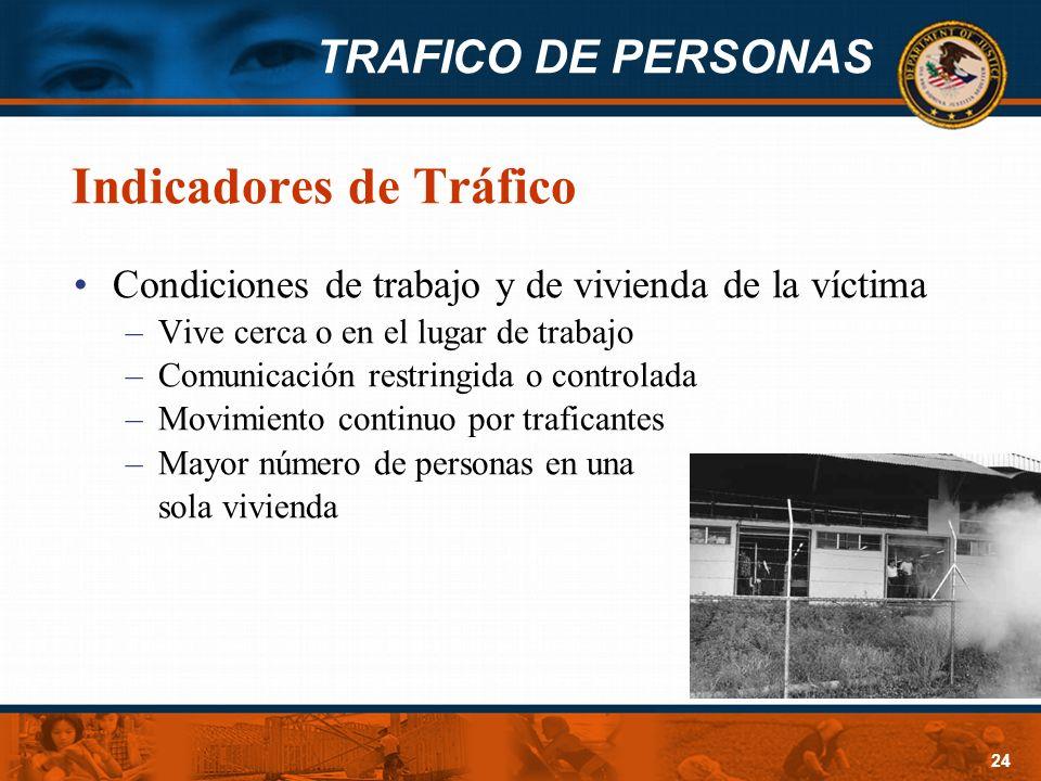 Indicadores de Tráfico