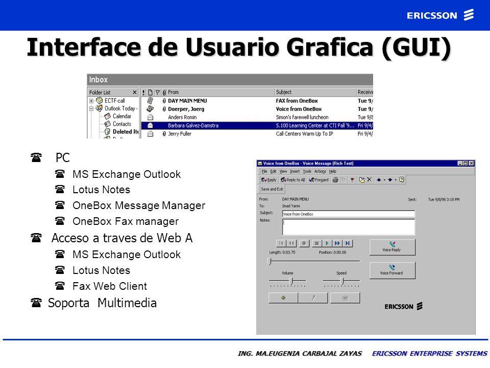 Interface de Usuario Grafica (GUI)