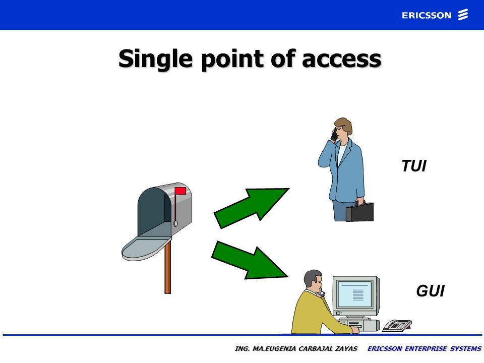 Single point of access TUI GUI